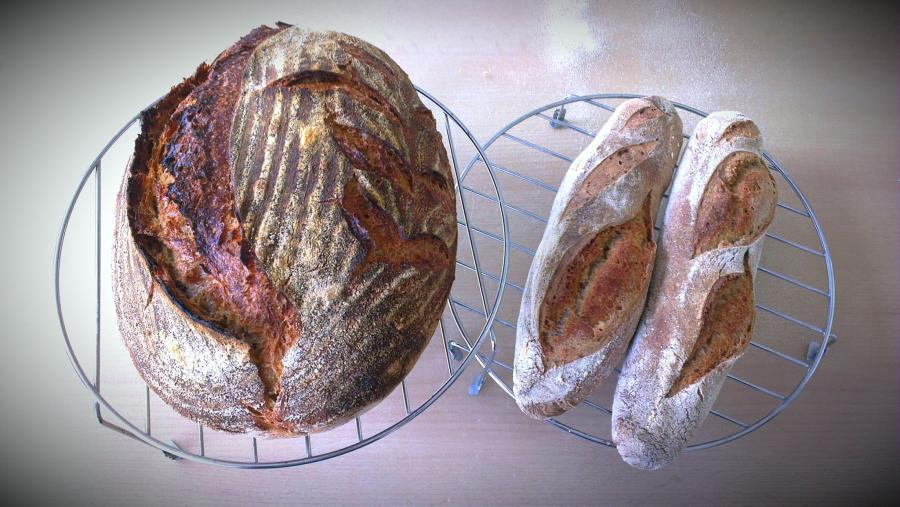 two breads