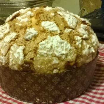 Arturo Panettone first overview