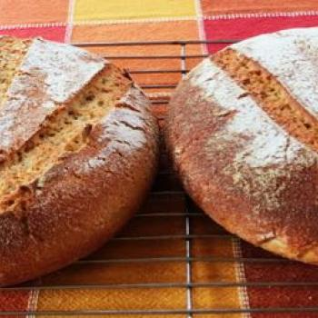Barb Kamut Sourdough first overview
