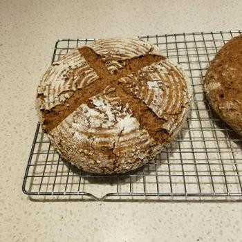 Boomerang  Spelt bread with wheatberries, flax, rolled oats first overview