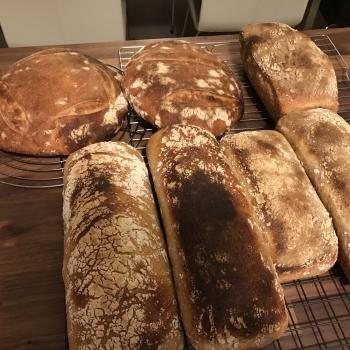 Herbert Croissants, bread, soft flatbreads first overview