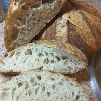 Honey Bunny All kind of sourdough recipes first slice