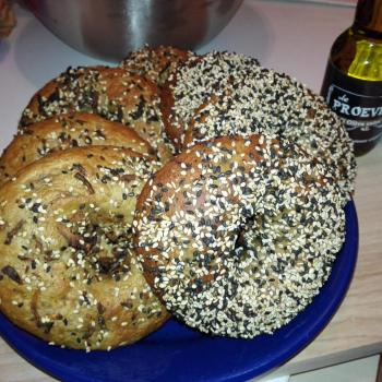 Honey Bunny Sourdough Bagels and rolls first overview
