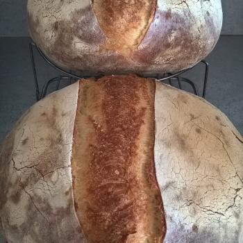 Katerina's Prozymaki Bread first overview
