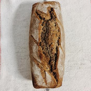 Nené Pan en molde de Sarraceno y Centeno first overview